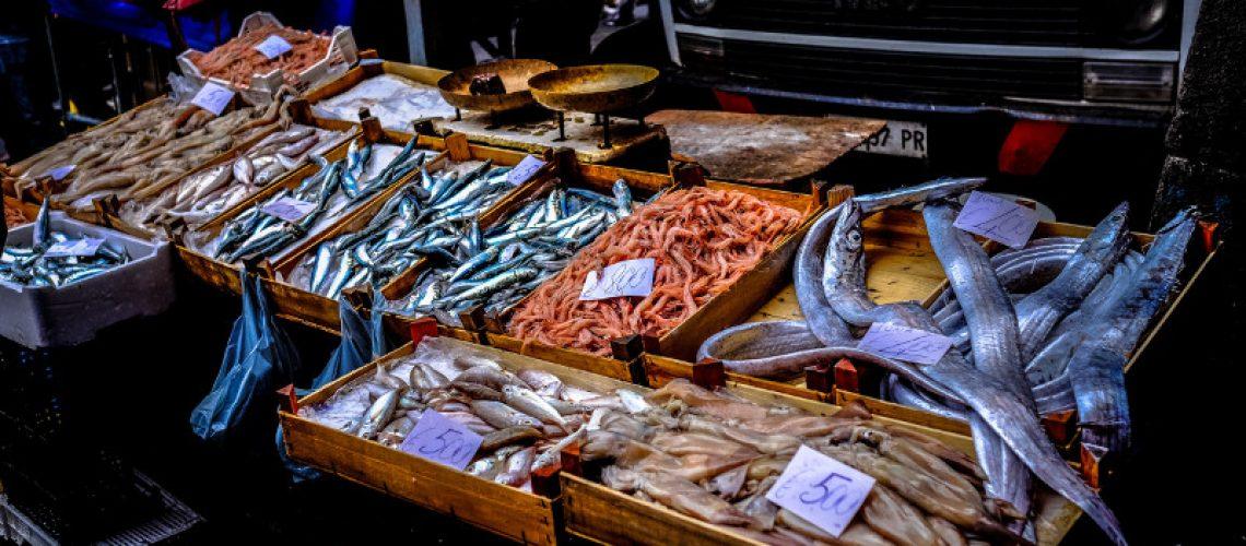 mangiare pesce a follonica